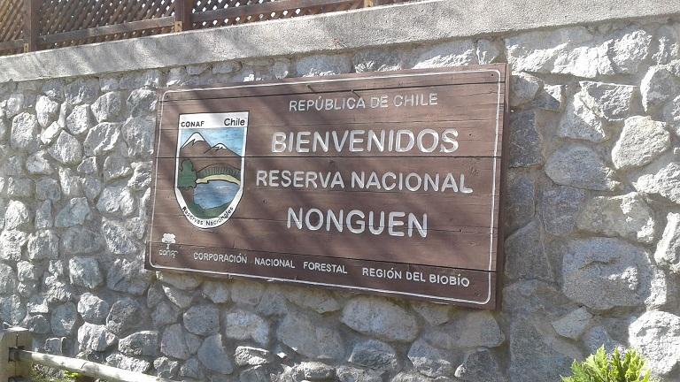 Reserva Nacional Nonguén: una infraestructura crítica bajo constante amenaza